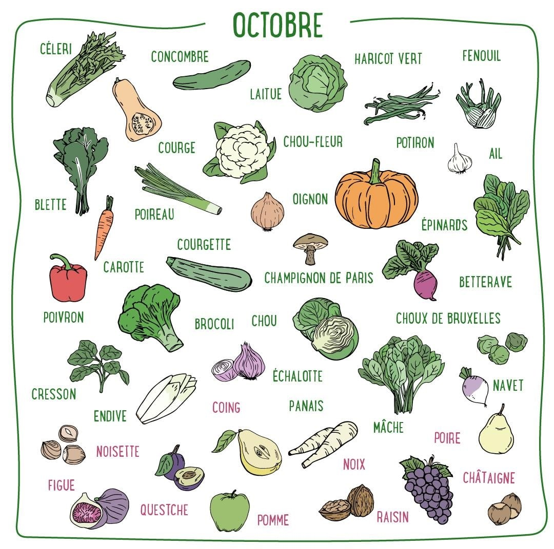 légumes octobre